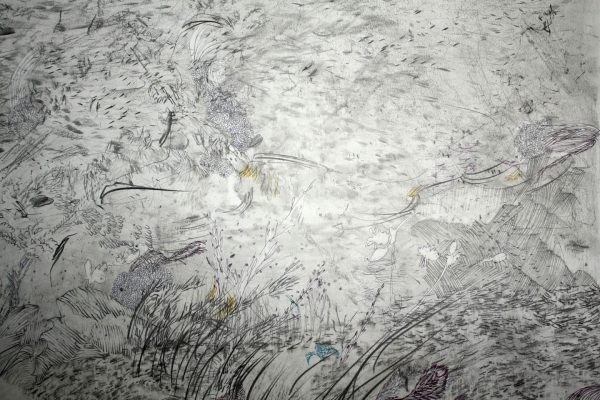 emma louise pratt detail landscape graphite and pen on paper II 2019